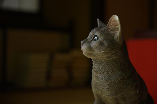 Meijineko